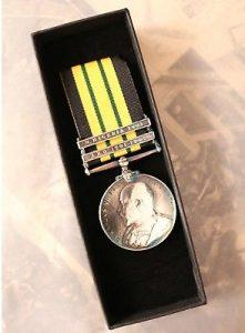 EDVII Africa Service medal