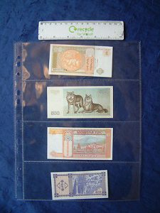 Banknote collectors album sleeves