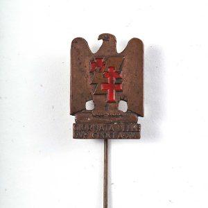 IMG red cross pin